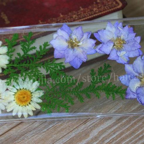 iphone 6 case Pressed Flower iphone 6 plus case Real Flower iphone 5s case iphone 5 case iphone 5c case iphone 4s 4 case